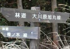 oogawaraasahimaru
